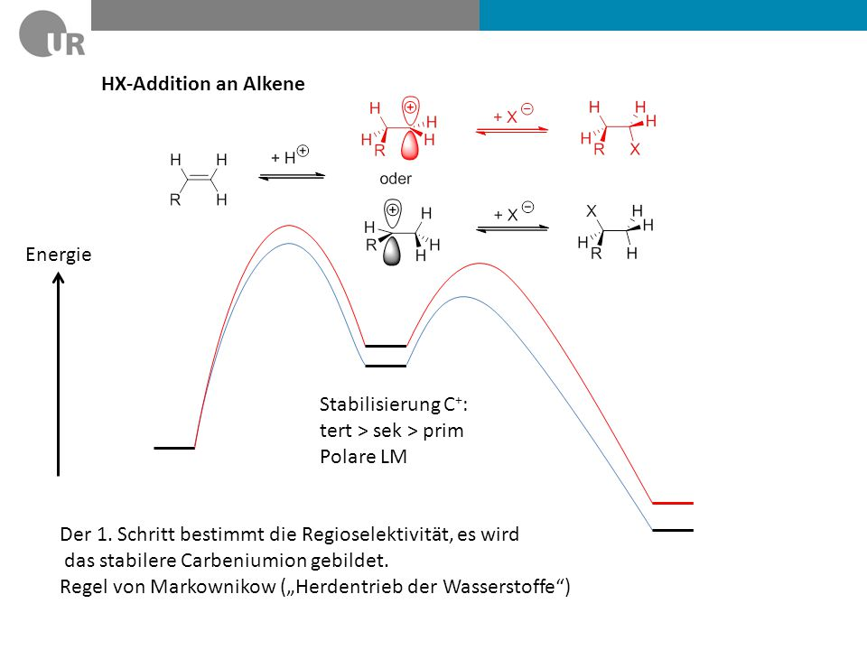 HX-Addition an Alkene Stabilisierung C + : tert > sek > prim Polare LM Energie Der 1. Schritt bestimmt die Regioselektivität, es wird das stabilere Ca