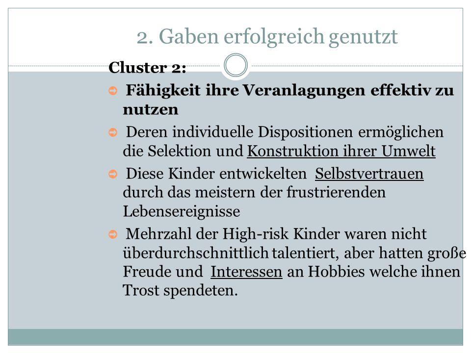 2. Gaben erfolgreich genutzt Cluster 2: ➲ Fähigkeit ihre Veranlagungen effektiv zu nutzen ➲ Deren individuelle Dispositionen ermöglichen die Selektion