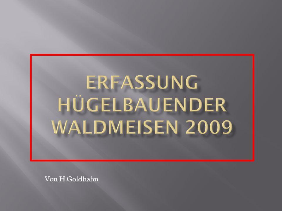 """1.Erfasst wurde aber mit dem """"Erfassungsbogen für Waldameisen der Ameisenschutzwarte Sachsen."""