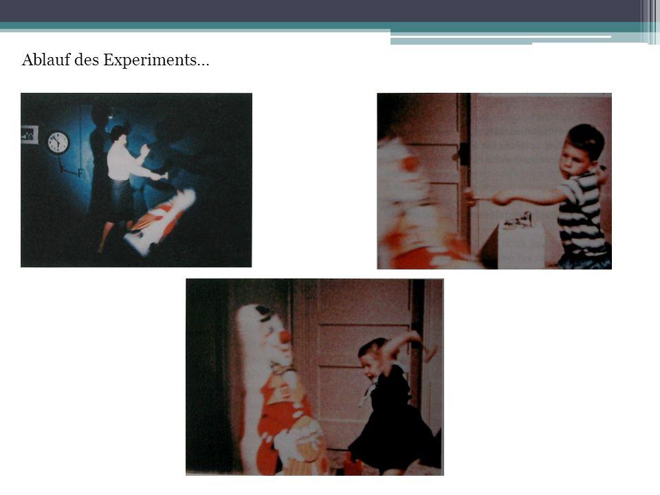 Ablauf des Experiments…