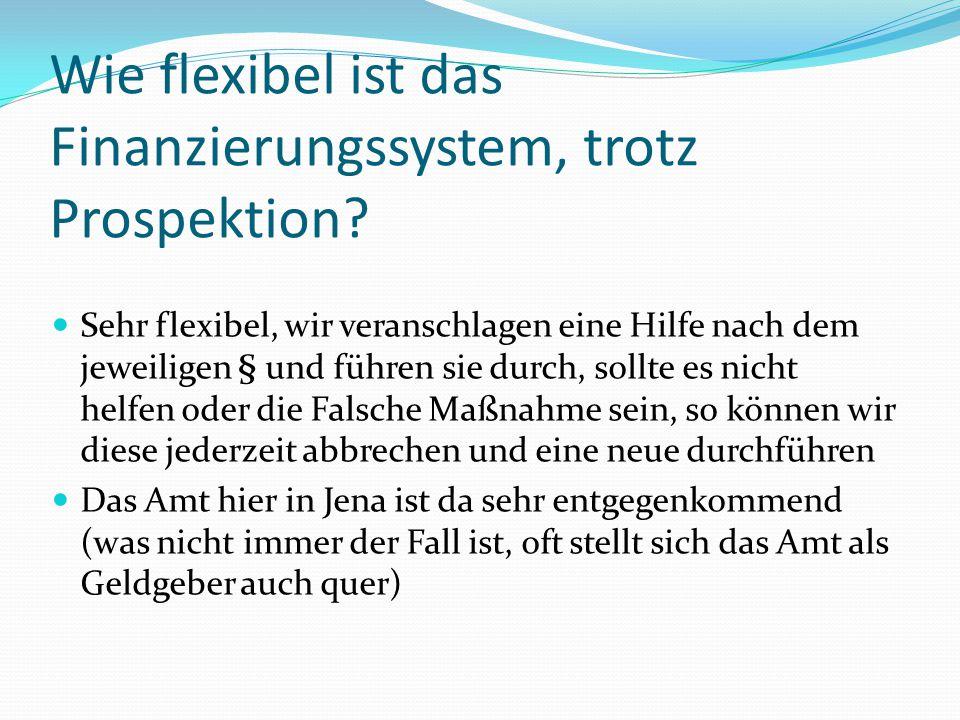 Wie flexibel ist das Finanzierungssystem, trotz Prospektion? Sehr flexibel, wir veranschlagen eine Hilfe nach dem jeweiligen § und führen sie durch, s