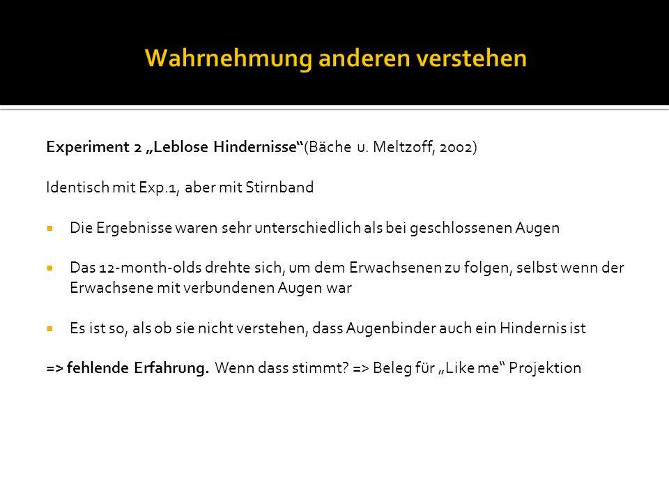 "Experiment 2 ""Leblose Hindernisse (Bäche u."