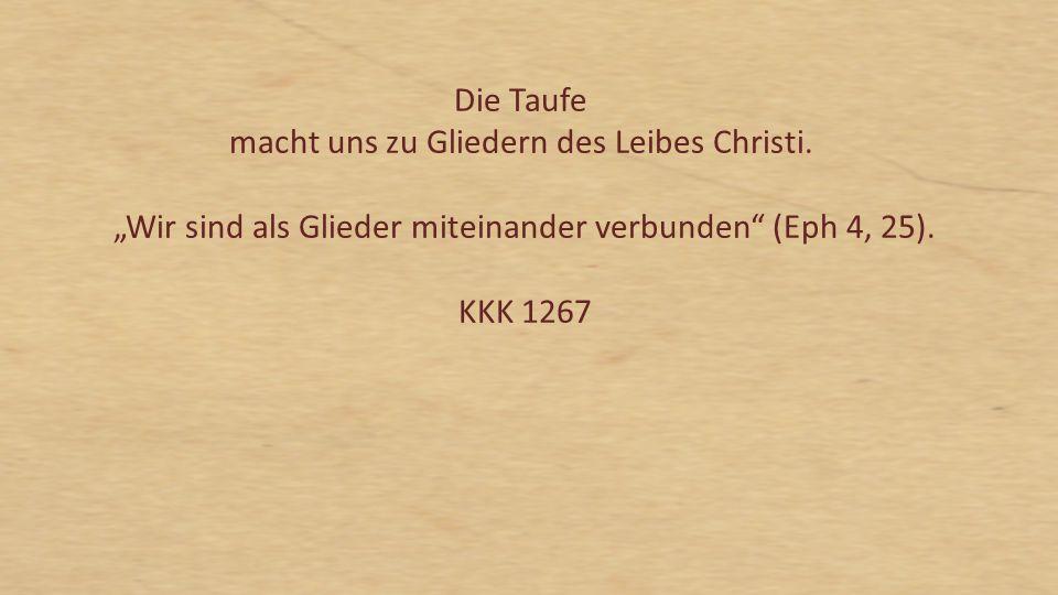 """Die Taufe reinigt nicht nur von allen Sünden, sondern macht den Neugetauften zugleich zu einer """"neuen Schöpfung 2 Kor 5,17, zu einem Adoptivsohn Gottes Gal 4,5; er hat """"an der göttlichen Natur Anteil 2 Petr 1,4 ist Glied Christi 1 Kor 6,15;12,27, """"Miterbe mit ihm Röm 8,17 und ein Tempel des Heiligen Geistes 1 Kor 6,19."""