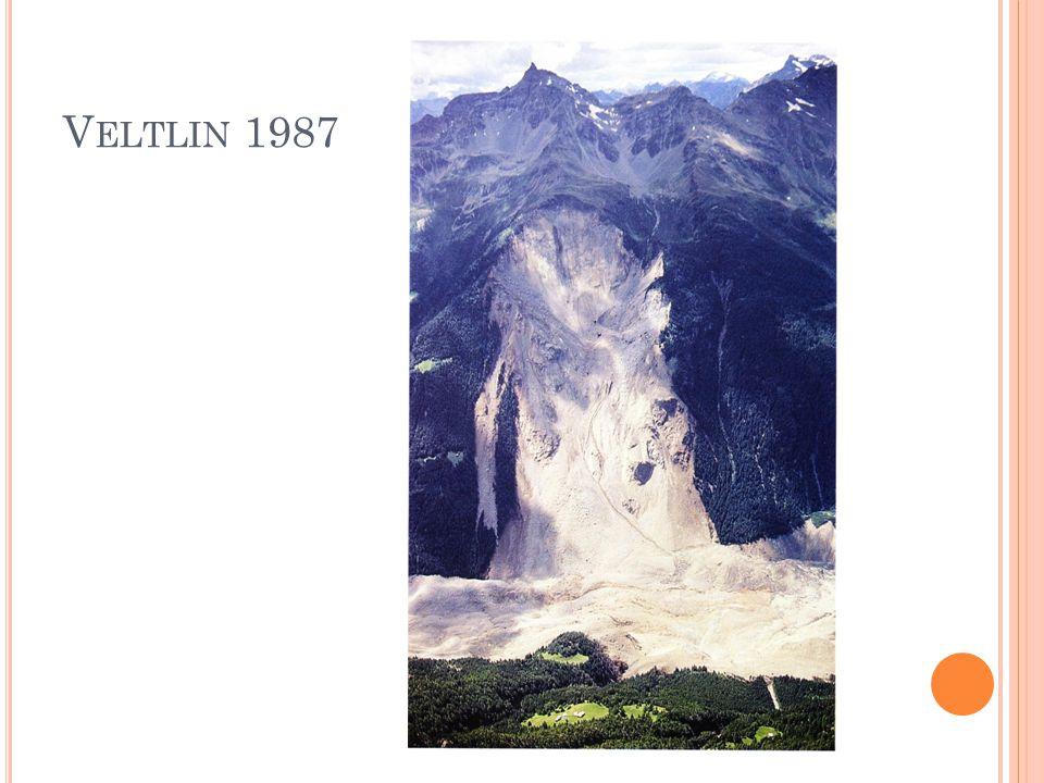 V ELTLIN 1987