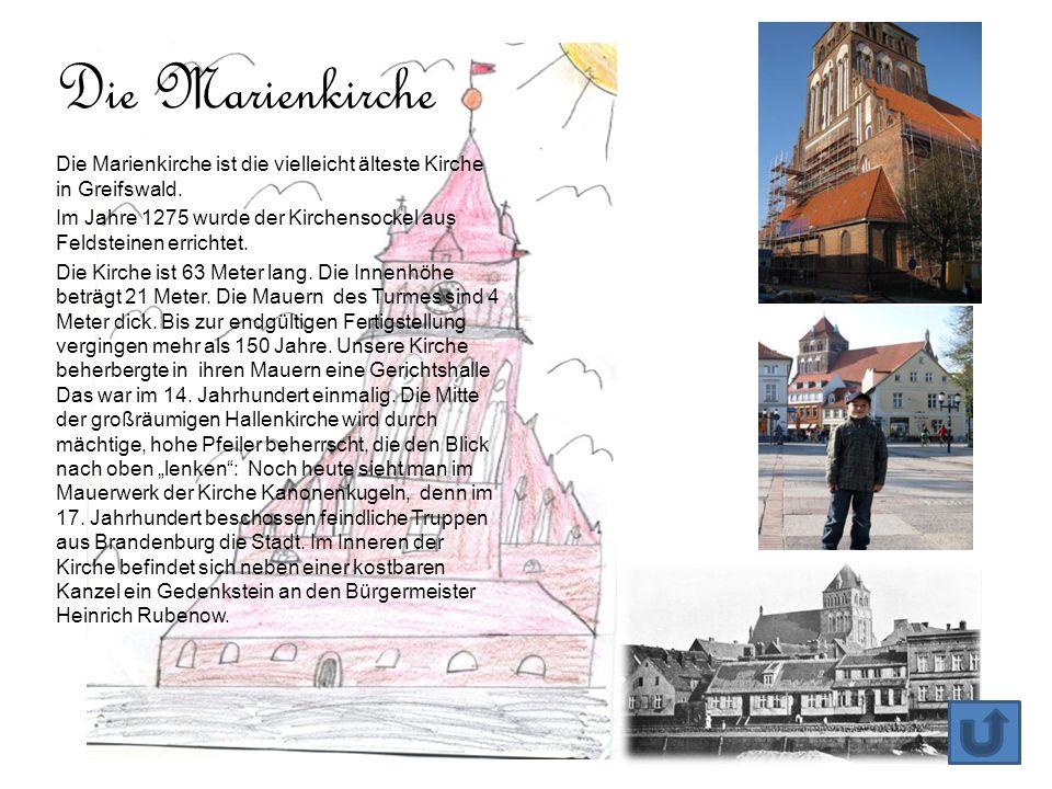 Die Marienkirche ist die vielleicht älteste Kirche in Greifswald. Im Jahre 1275 wurde der Kirchensockel aus Feldsteinen errichtet. Die Kirche ist 63 M