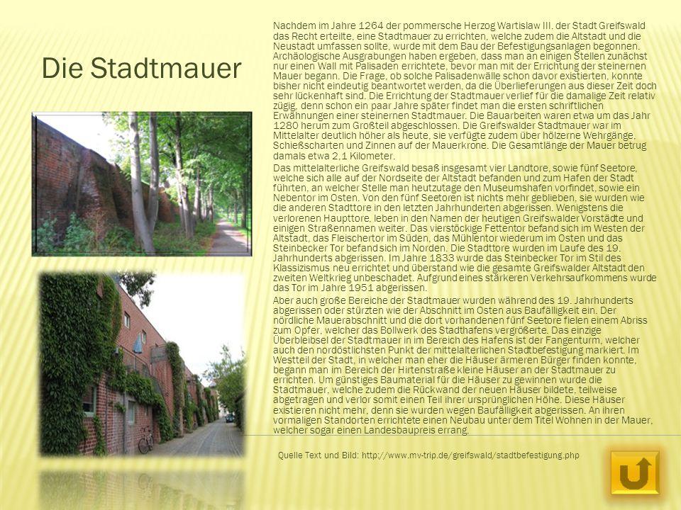 Die Stadtmauer Nachdem im Jahre 1264 der pommersche Herzog Wartislaw III. der Stadt Greifswald das Recht erteilte, eine Stadtmauer zu errichten, welch