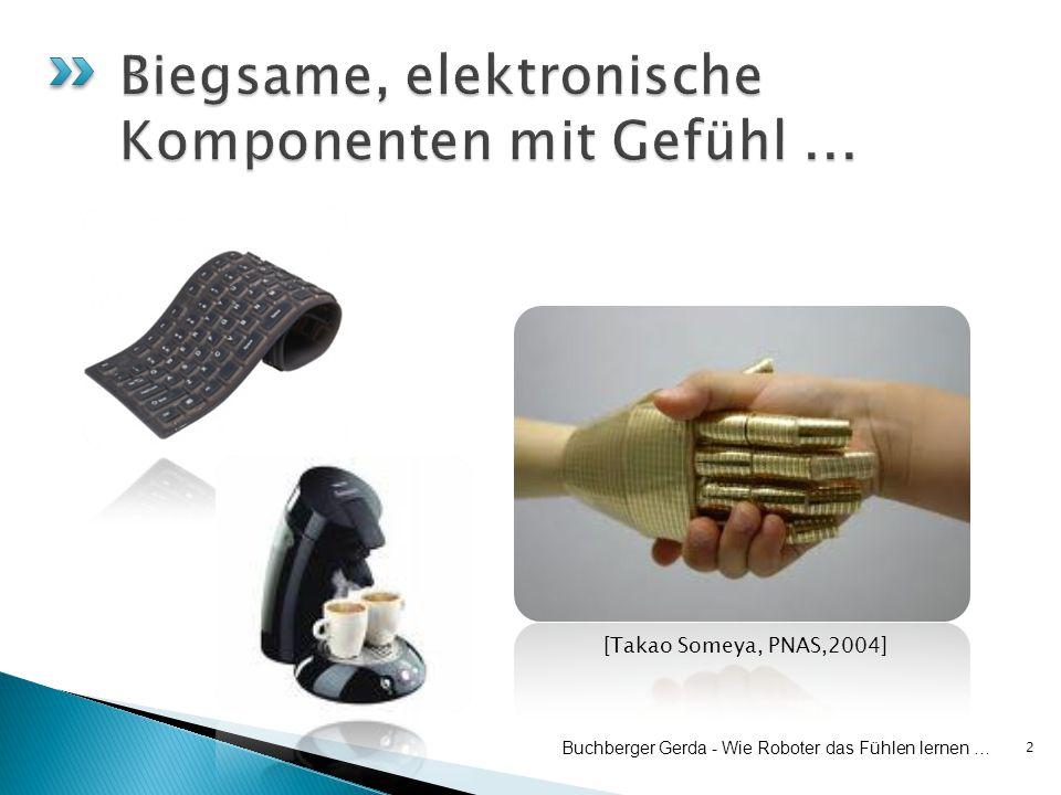 2 Buchberger Gerda - Wie Roboter das Fühlen lernen … [Takao Someya, PNAS,2004]
