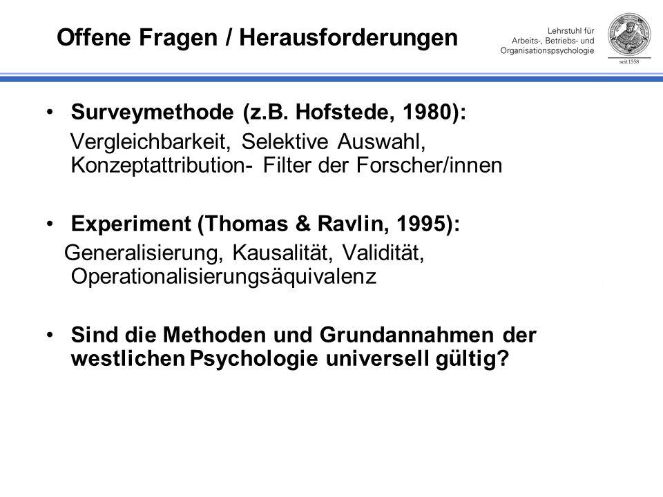 Offene Fragen / Herausforderungen Surveymethode (z.B.