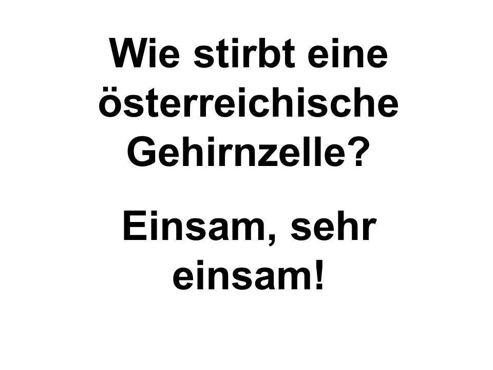 Wie stirbt eine österreichische Gehirnzelle? Einsam, sehr einsam!