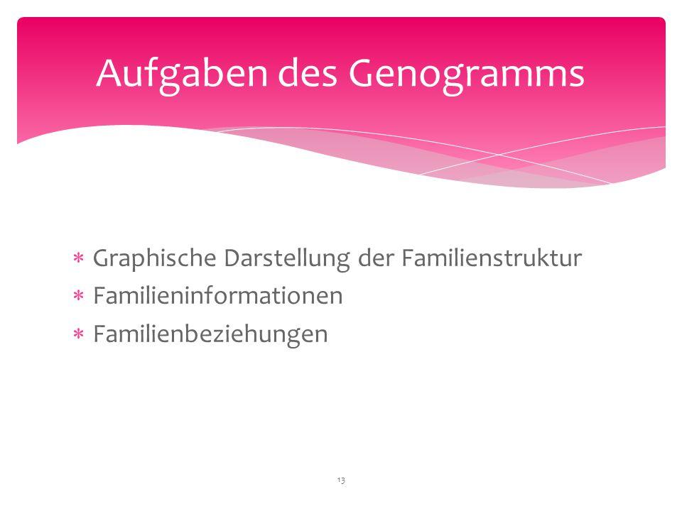  Graphische Darstellung der Familienstruktur  Familieninformationen  Familienbeziehungen Aufgaben des Genogramms 13