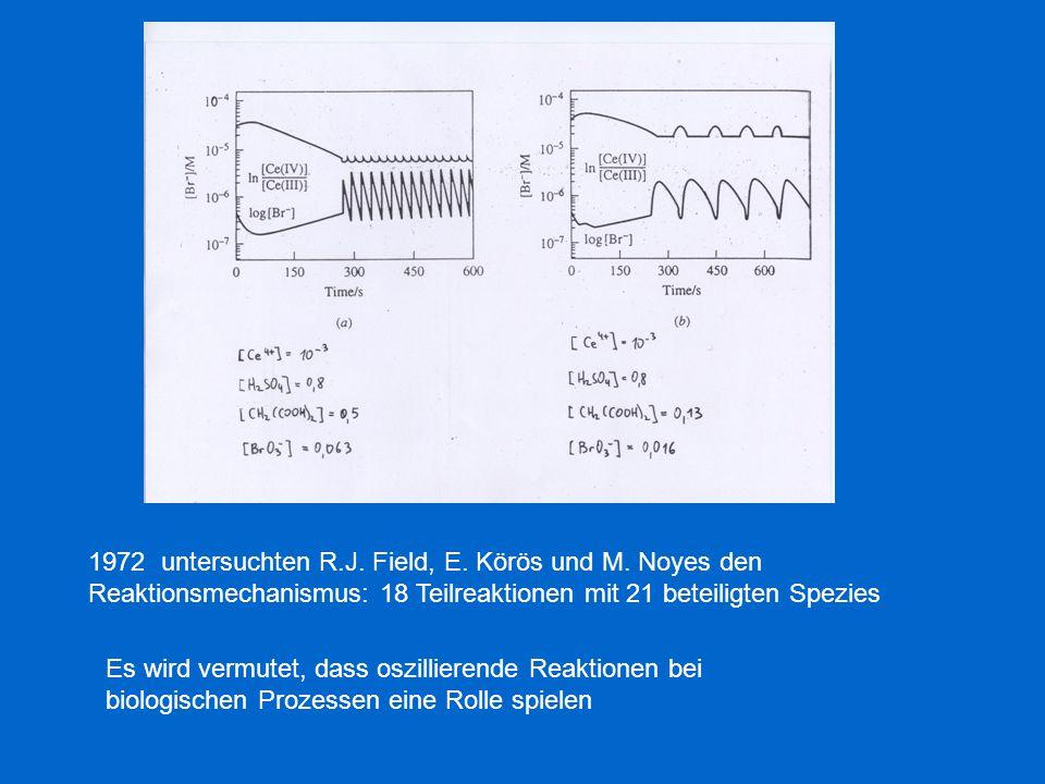 1972 untersuchten R.J. Field, E. Körös und M. Noyes den Reaktionsmechanismus: 18 Teilreaktionen mit 21 beteiligten Spezies Es wird vermutet, dass oszi