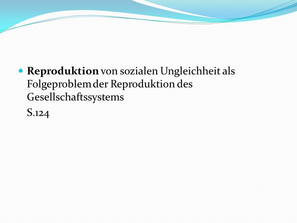Reproduktion von sozialen Ungleichheit als Folgeproblem der Reproduktion des Gesellschaftssystems S.124