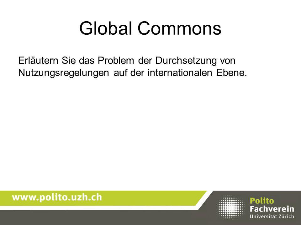 Erläutern Sie das Problem der Durchsetzung von Nutzungsregelungen auf der internationalen Ebene.