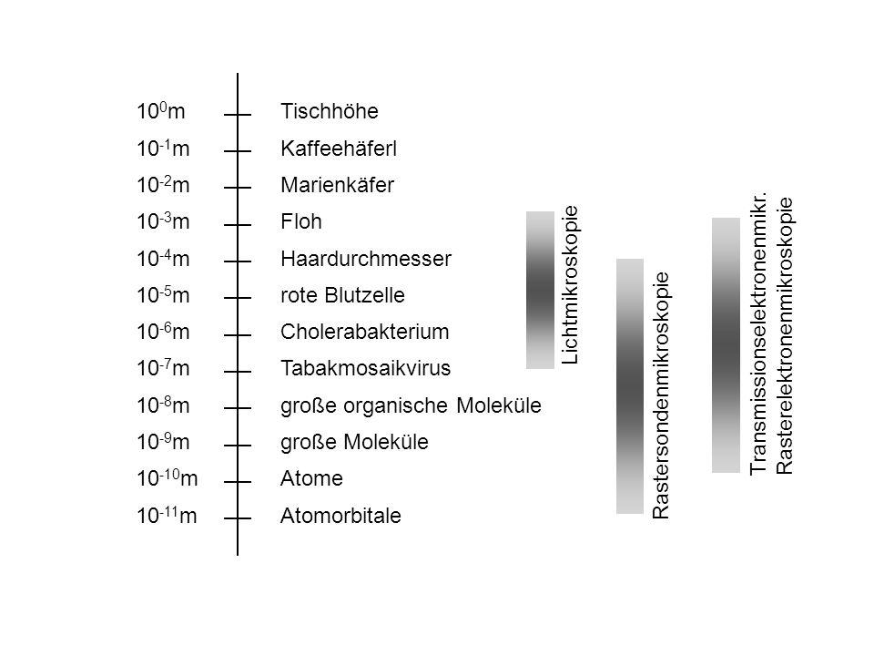 10 0 m 10 -1 m 10 -2 m 10 -3 m 10 -4 m 10 -5 m 10 -6 m 10 -7 m 10 -8 m 10 -9 m 10 -10 m 10 -11 m Tischhöhe Kaffeehäferl Marienkäfer Floh Haardurchmess