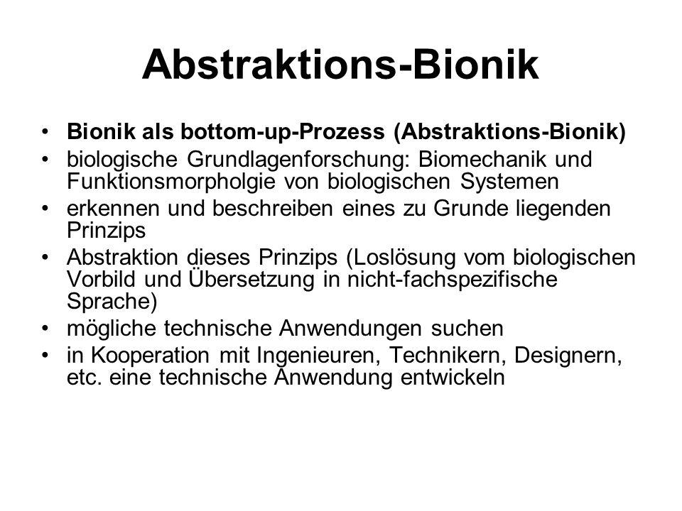 Abstraktions-Bionik Bionik als bottom-up-Prozess (Abstraktions-Bionik) biologische Grundlagenforschung: Biomechanik und Funktionsmorpholgie von biolog