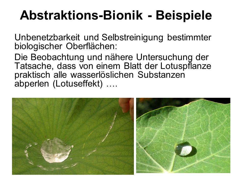 Abstraktions-Bionik - Beispiele Unbenetzbarkeit und Selbstreinigung bestimmter biologischer Oberflächen: Die Beobachtung und nähere Untersuchung der T