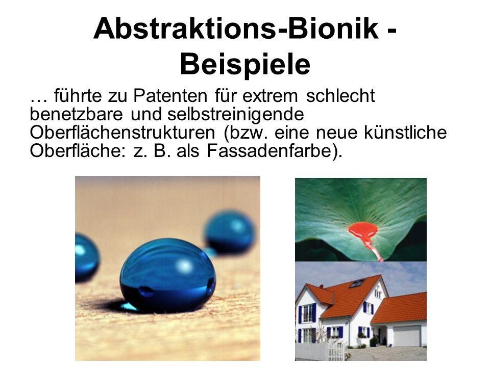 Abstraktions-Bionik - Beispiele … führte zu Patenten für extrem schlecht benetzbare und selbstreinigende Oberflächenstrukturen (bzw. eine neue künstli