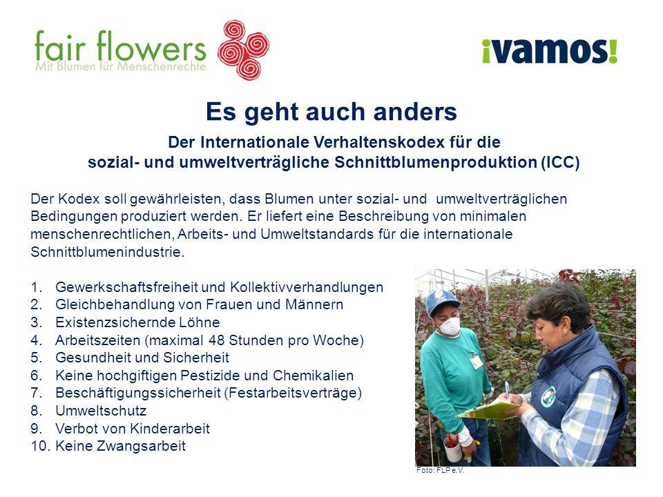 Es geht auch anders Der Internationale Verhaltenskodex für die sozial- und umweltverträgliche Schnittblumenproduktion (ICC) Der Kodex soll gewährleisten, dass Blumen unter sozial- und umweltverträglichen Bedingungen produziert werden.
