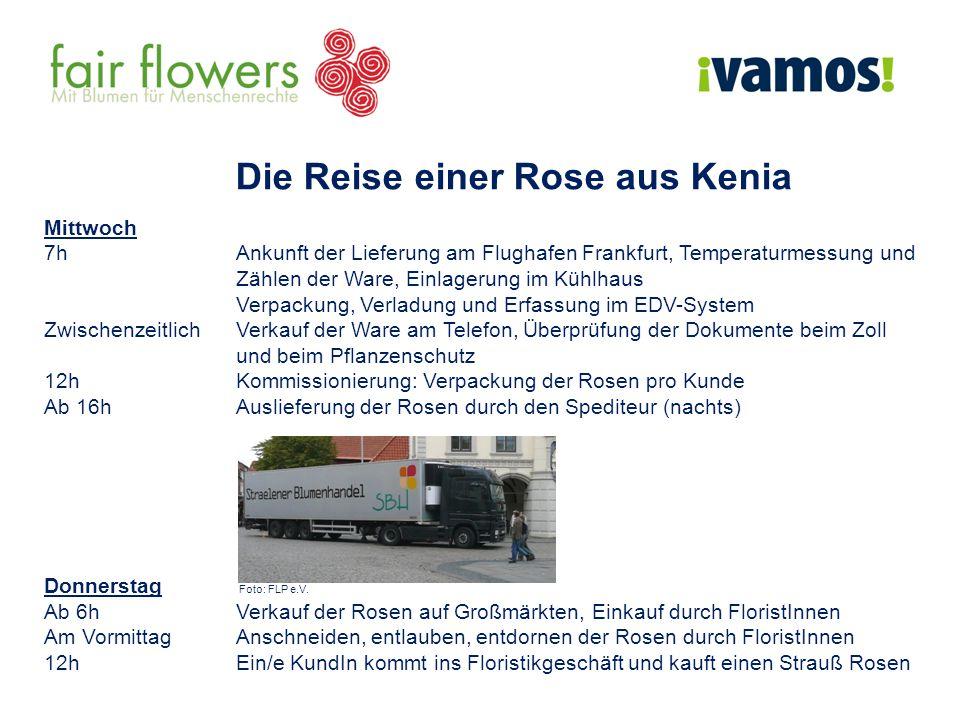 Die Reise einer Rose aus Kenia Mittwoch 7hAnkunft der Lieferung am Flughafen Frankfurt, Temperaturmessung und Zählen der Ware, Einlagerung im Kühlhaus