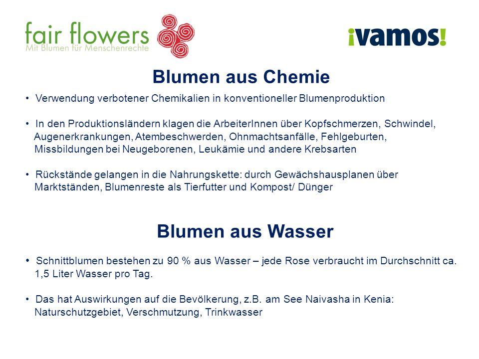 Blumen aus Chemie Verwendung verbotener Chemikalien in konventioneller Blumenproduktion In den Produktionsländern klagen die ArbeiterInnen über Kopfschmerzen, Schwindel, Augenerkrankungen, Atembeschwerden, Ohnmachtsanfälle, Fehlgeburten, Missbildungen bei Neugeborenen, Leukämie und andere Krebsarten Rückstände gelangen in die Nahrungskette: durch Gewächshausplanen über Marktständen, Blumenreste als Tierfutter und Kompost/ Dünger Blumen aus Wasser Schnittblumen bestehen zu 90 % aus Wasser – jede Rose verbraucht im Durchschnitt ca.
