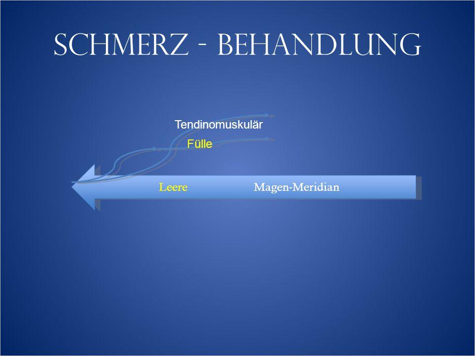 SCHMERZ - BEHANDLUNG LeereMagen-Meridian Tendinomuskulär Fülle