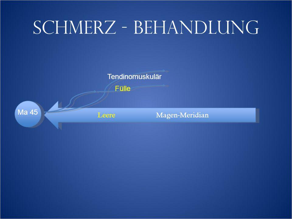 SCHMERZ - BEHANDLUNG LeereMagen-Meridian Tendinomuskulär Fülle Ma 45