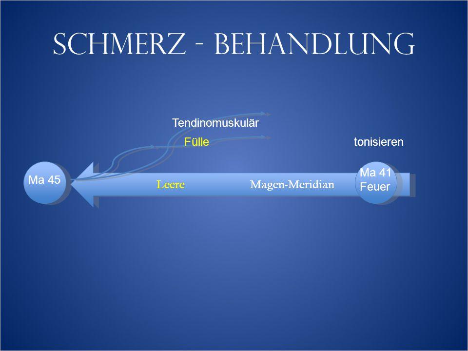 SCHMERZ - BEHANDLUNG LeereMagen-Meridian Tendinomuskulär Fülle Ma 45 Ma 41 Feuer tonisieren