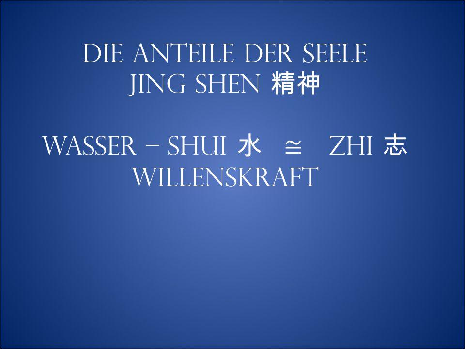 DIE ANTEILE DER SEELE JING SHEN 精神 WASSER – SHUI 水 ≅ ZHI 志 WILLENSKRAFT