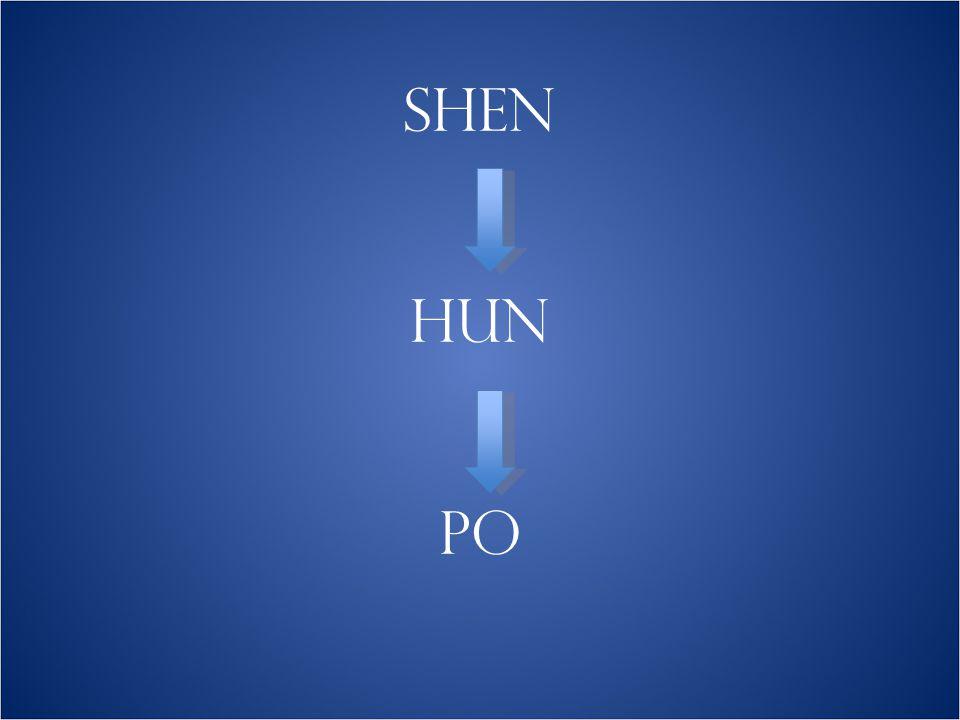DIE ANTEILE DER SEELE JING SHEN 精神 METALL – JIN 金 ≅ PO 魄 ANIMALE -, SENSITIVE SEELE VITALES PRINZIP