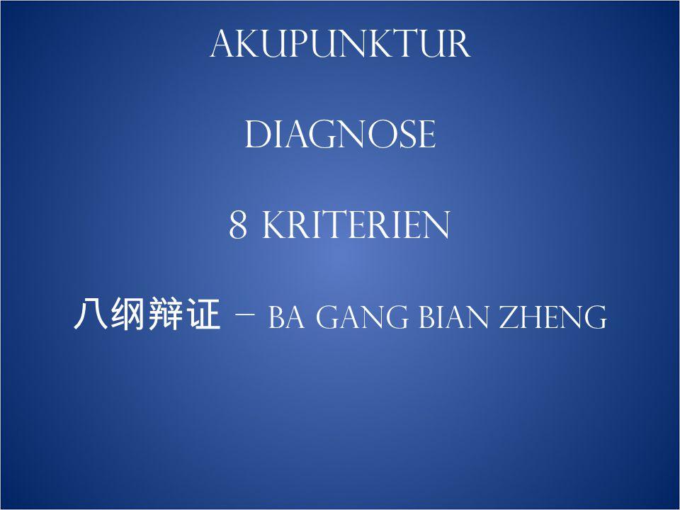 AKUPUNKTUR DIAGNOSE 8 KRITERIEN 八纲辩证 – ba gang bian zheng