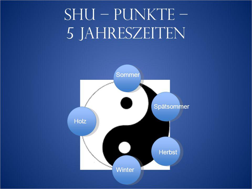 SHU – PUNKTE – 5 JAHRESZEITEN Sommer Herbst Winter Spätsommer Holz
