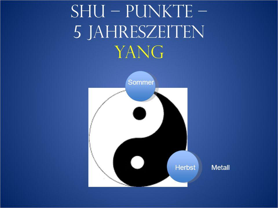 SHU – PUNKTE – 5 JAHRESZEITEN YANG Sommer HerbstMetall