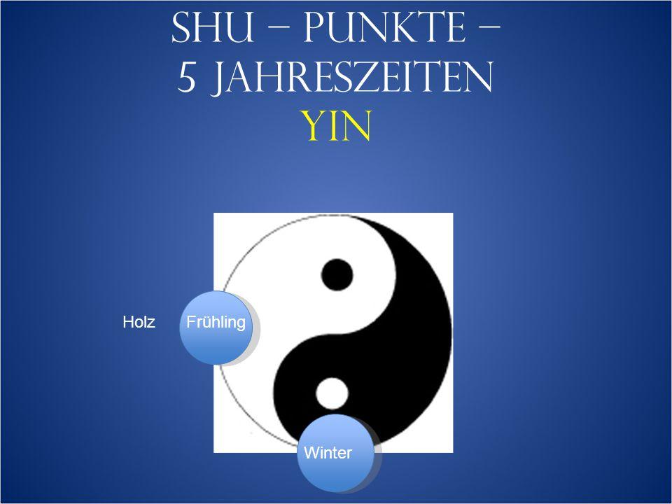 SHU – PUNKTE – 5 JAHRESZEITEN YIN Frühling Winter Holz