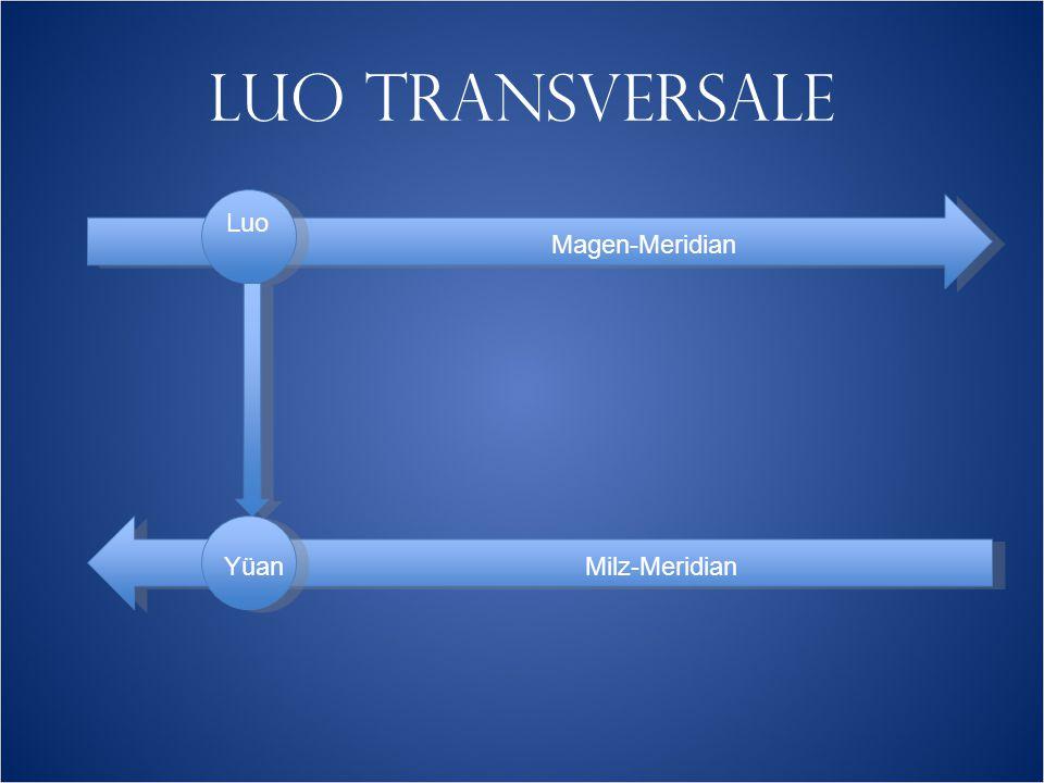 LUO TRANSVERSALE Magen-Meridian Milz-Meridian Luo Yüan