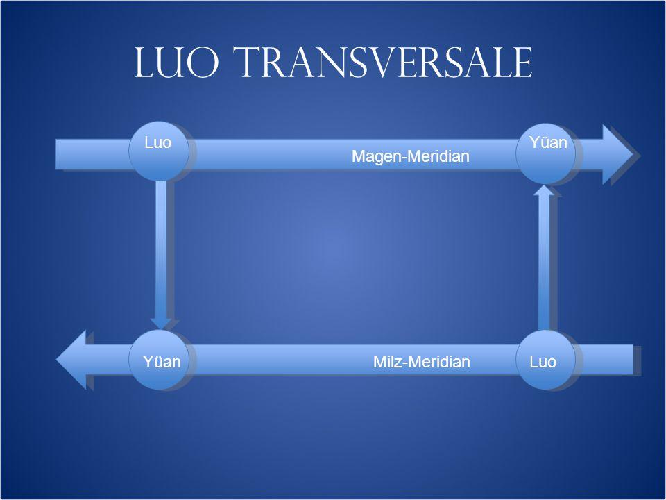 LUO TRANSVERSALE Magen-Meridian Milz-Meridian Luo Yüan Luo