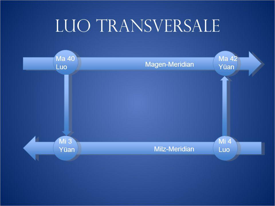 LUO TRANSVERSALE Magen-Meridian Milz-Meridian Ma 40 Luo Mi 3 Yüan Ma 42 Yüan Mi 4 Luo