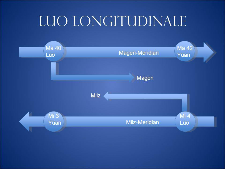 LUO LONGITUDINALE Magen-Meridian Milz-Meridian Ma 40 Luo Mi 3 Yüan Mi 4 Luo Magen Milz Ma 42 Yüan