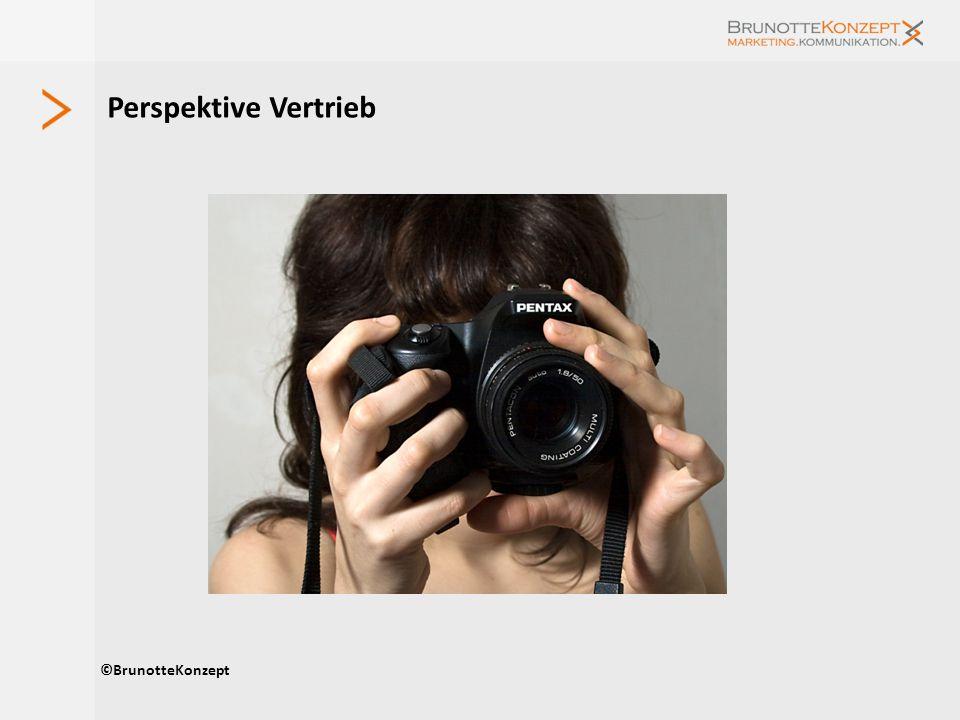Perspektive Vertrieb ©BrunotteKonzept