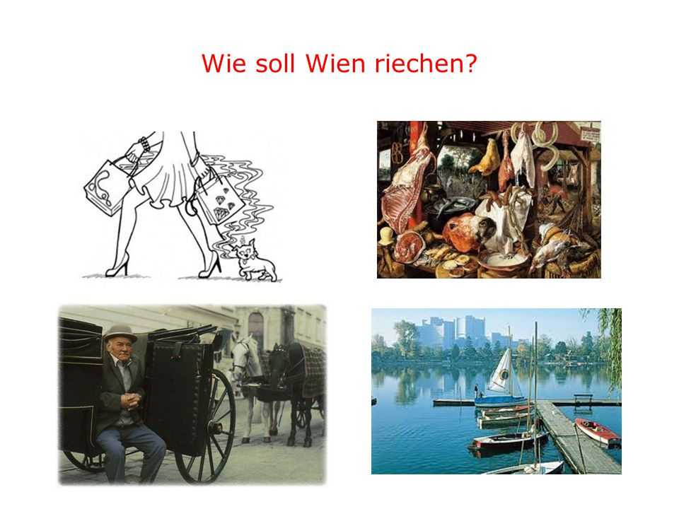 Wie soll Wien riechen