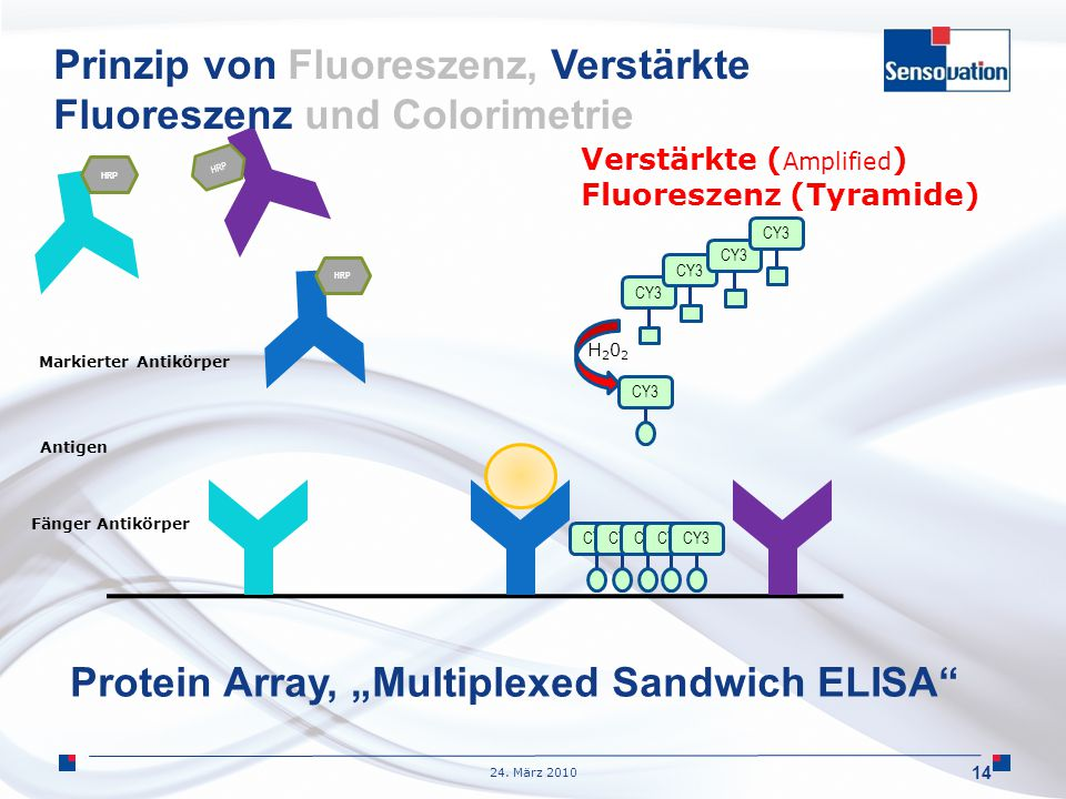 "24. März 2010 14 H202H202 HRP Fänger Antikörper Antigen Markierter Antikörper CY3 Verstärkte ( Amplified ) Fluoreszenz (Tyramide) Protein Array, ""Mult"