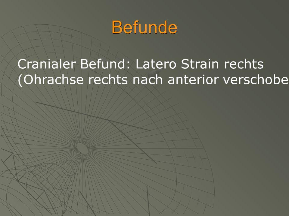 Befunde Cranialer Befund: Latero Strain rechts (Ohrachse rechts nach anterior verschoben, Abflachung Hinterkopf rechts, Os frontale anterior) Argenta