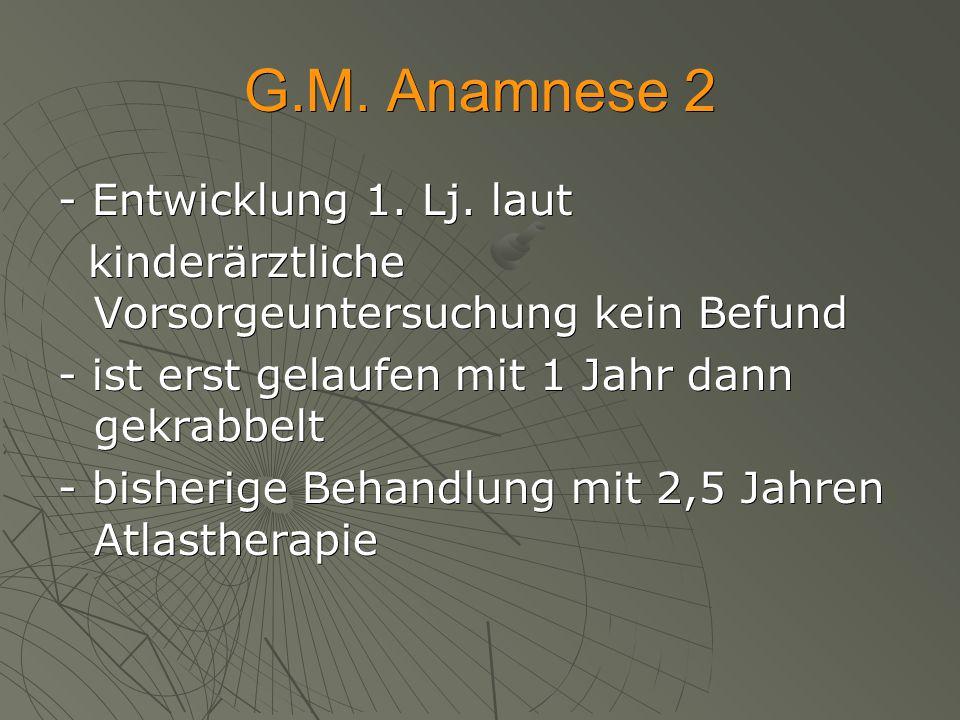 G.M. Anamnese 2 - Entwicklung 1. Lj. laut kinderärztliche Vorsorgeuntersuchung kein Befund kinderärztliche Vorsorgeuntersuchung kein Befund - ist erst