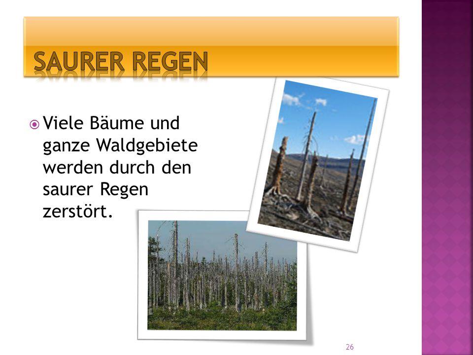  Viele Bäume und ganze Waldgebiete werden durch den saurer Regen zerstört. 26