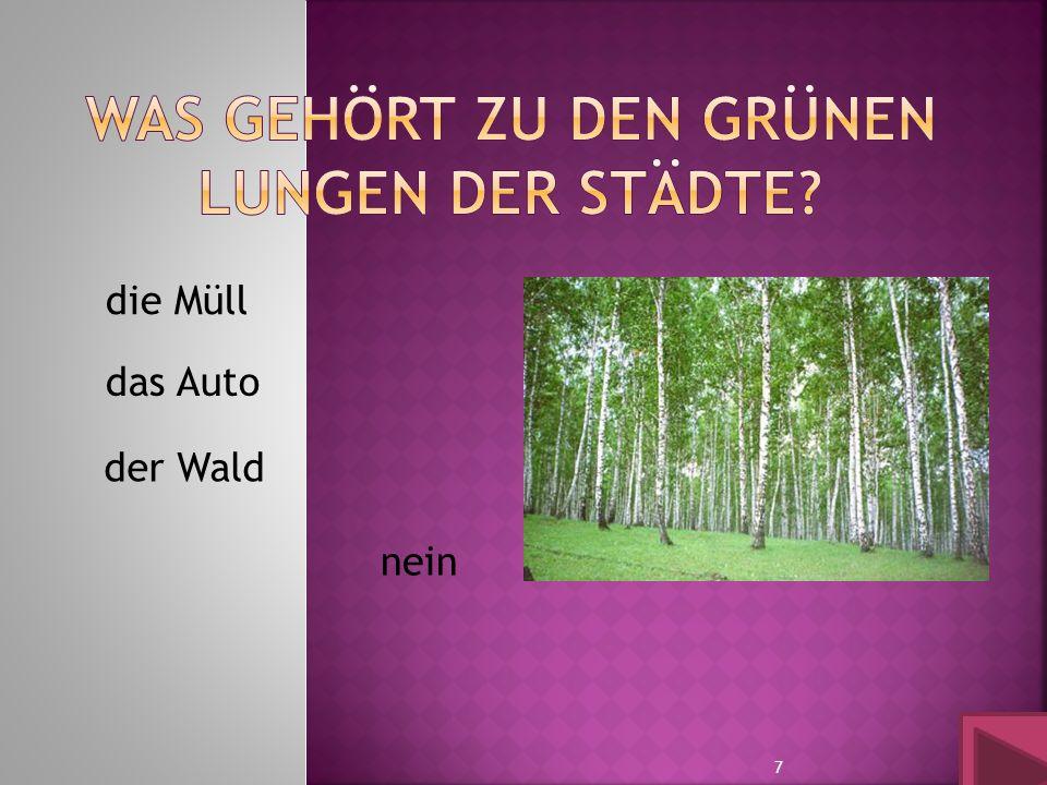 der Wald die Müll das Auto nein 7