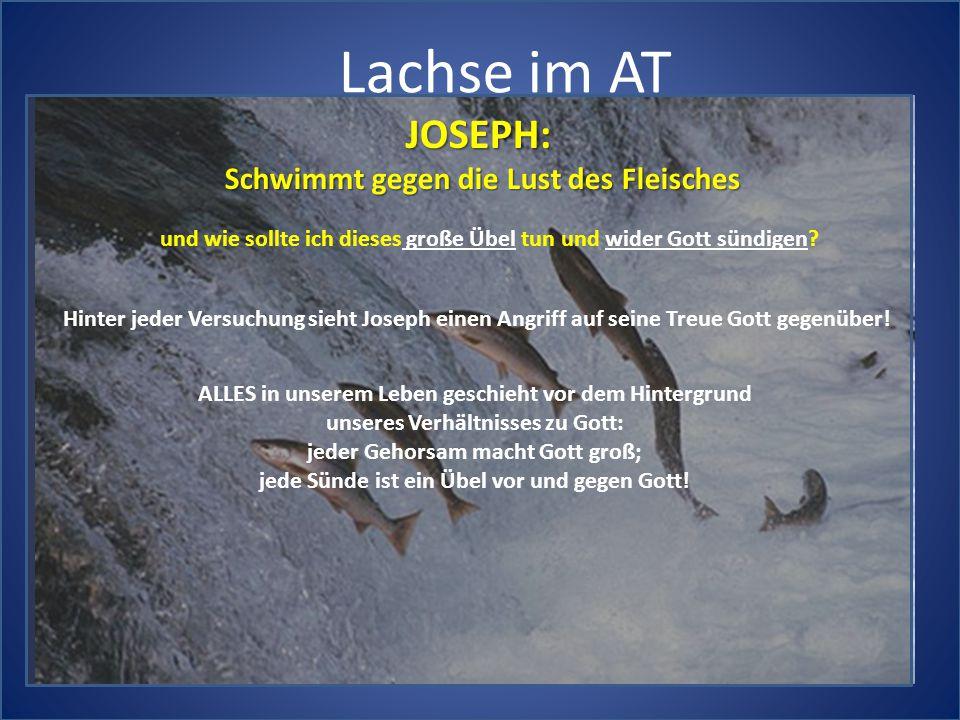 Lachse im AT JOSEPH: Schwimmt gegen die Lust des Fleisches und wie sollte ich dieses große Übel tun und wider Gott sündigen? Hinter jeder Versuchung s