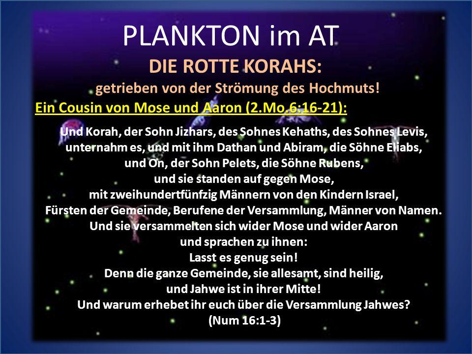 PLANKTON im AT DIE ROTTE KORAHS: getrieben von der Strömung des Hochmuts! Und Korah, der Sohn Jizhars, des Sohnes Kehaths, des Sohnes Levis, unternahm
