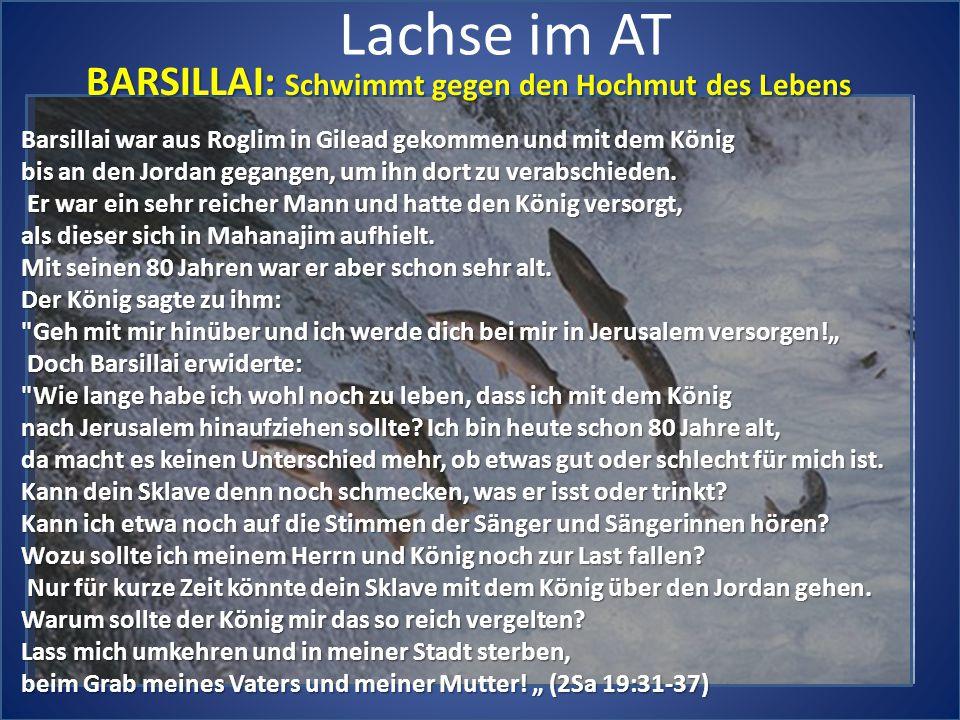 Lachse im AT BARSILLAI: Schwimmt gegen den Hochmut des Lebens Barsillai war aus Roglim in Gilead gekommen und mit dem König bis an den Jordan gegangen