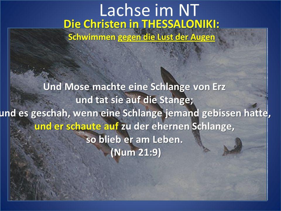 Lachse im NT Die Christen in THESSALONIKI: Schwimmen gegen die Lust der Augen Und Mose machte eine Schlange von Erz und tat sie auf die Stange; und es