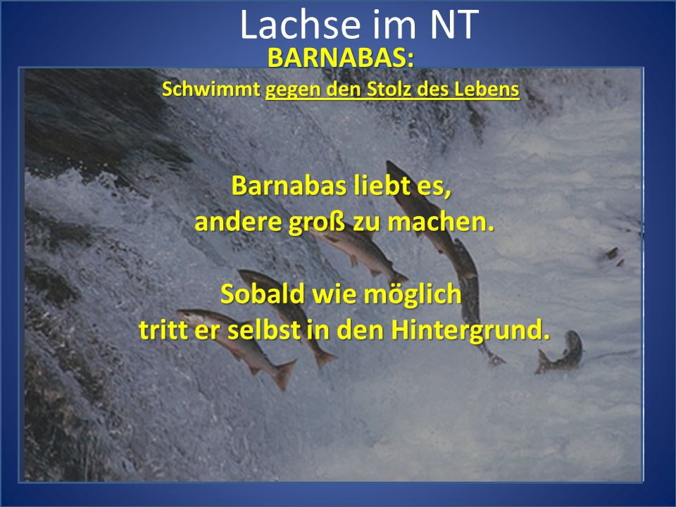 Lachse im NT BARNABAS: Schwimmt gegen den Stolz des Lebens Barnabas liebt es, andere groß zu machen. Sobald wie möglich tritt er selbst in den Hinterg