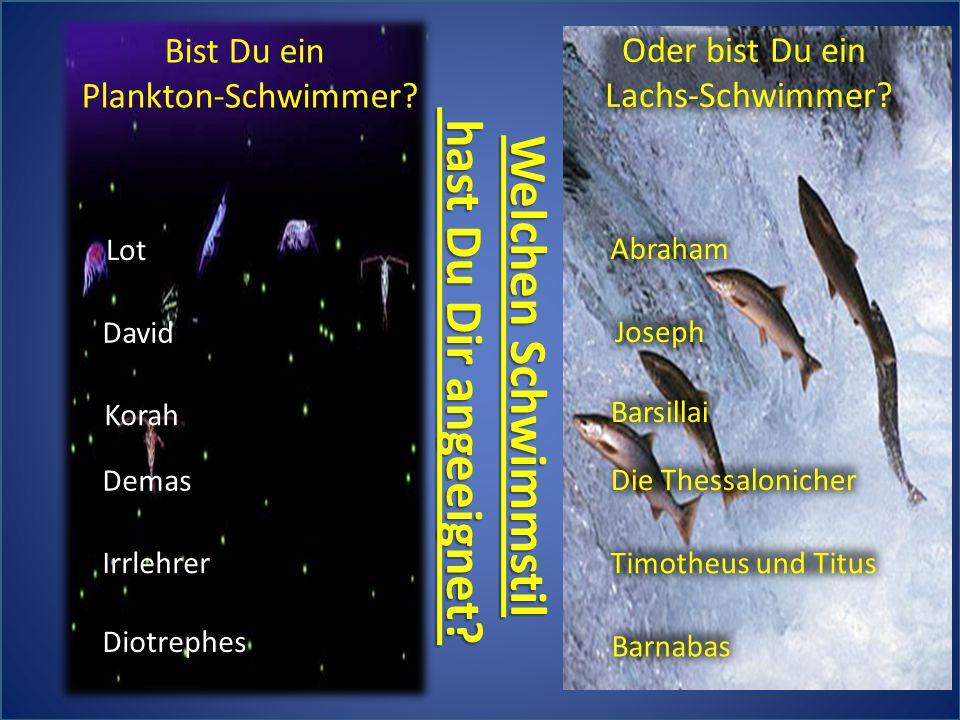 Demas Irrlehrer Diotrephes Korah David Lot Bist Du ein Plankton-Schwimmer? Welchen Schwimmstil hast Du Dir angeeignet? hast Du Dir angeeignet? Oder bi